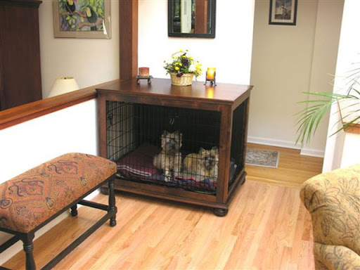 Image Result For Luring Dog Training